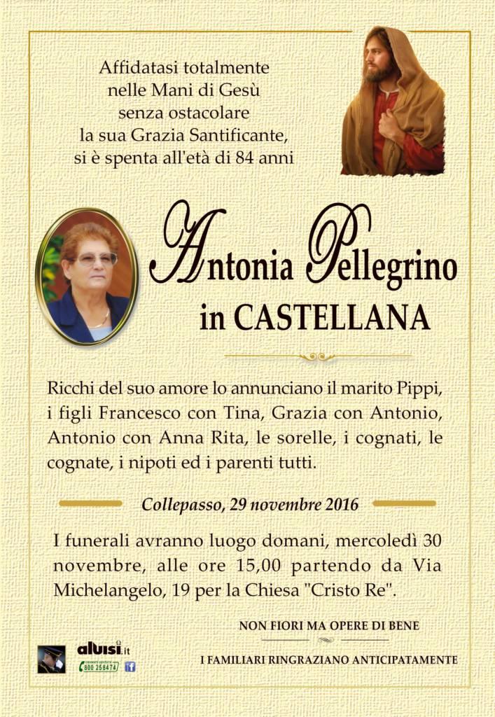 annuncio-antonia-pellegrino-castellana-29-nov-2016-face