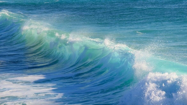 surf-3104869_1280.jpg