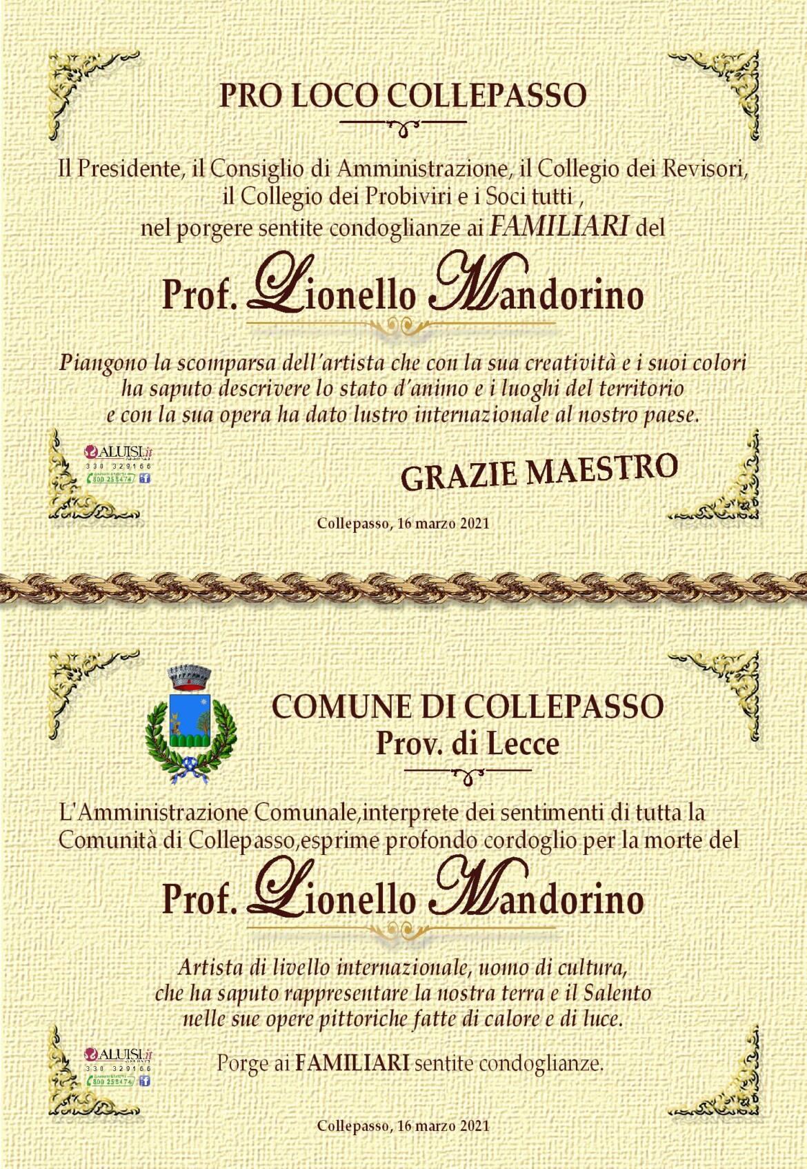 partecipazione-lionello-mandorino3.jpg