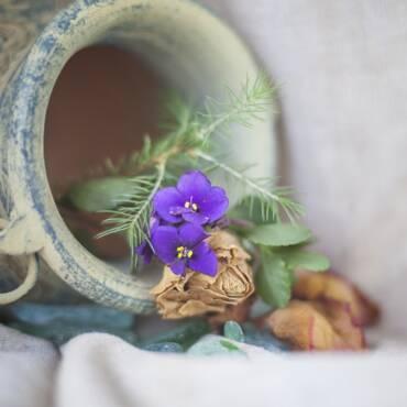 Riesumazione della salma: dopo quanti anni avviene?