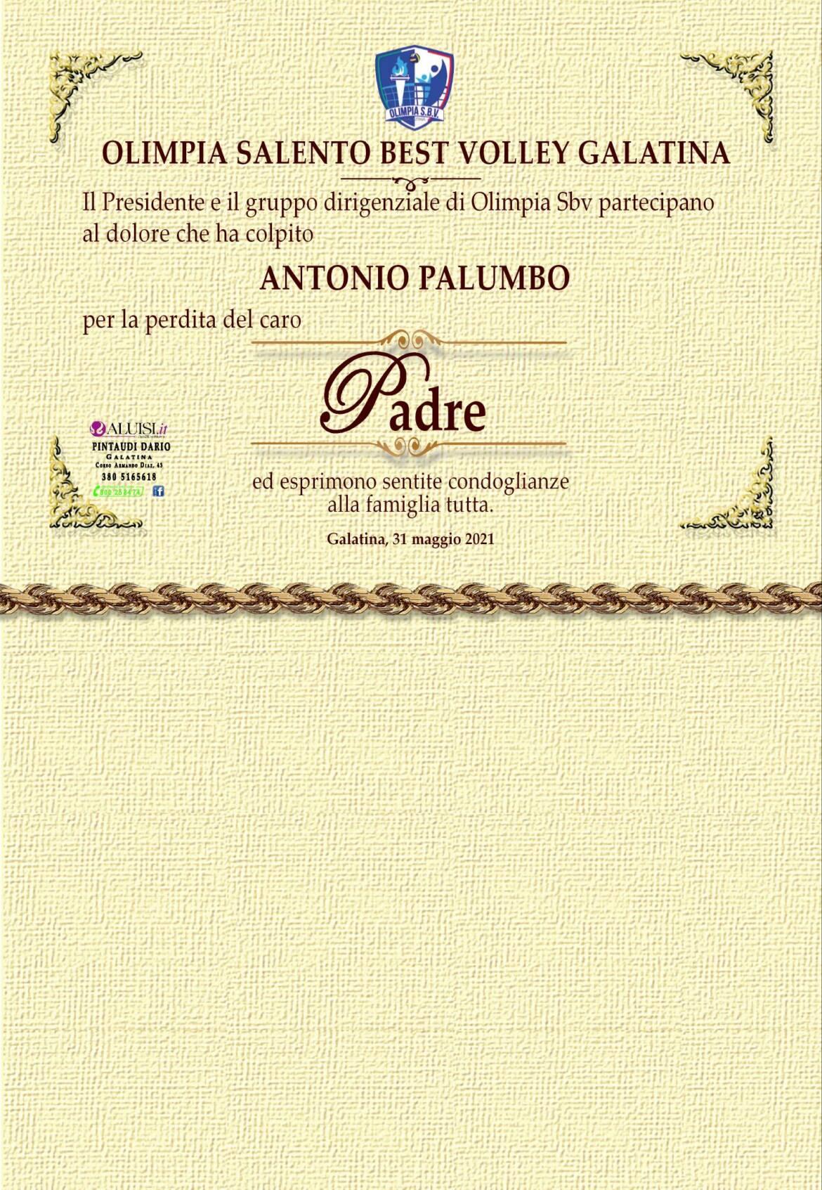 partceipazione-giovanni-palumbo3.jpg