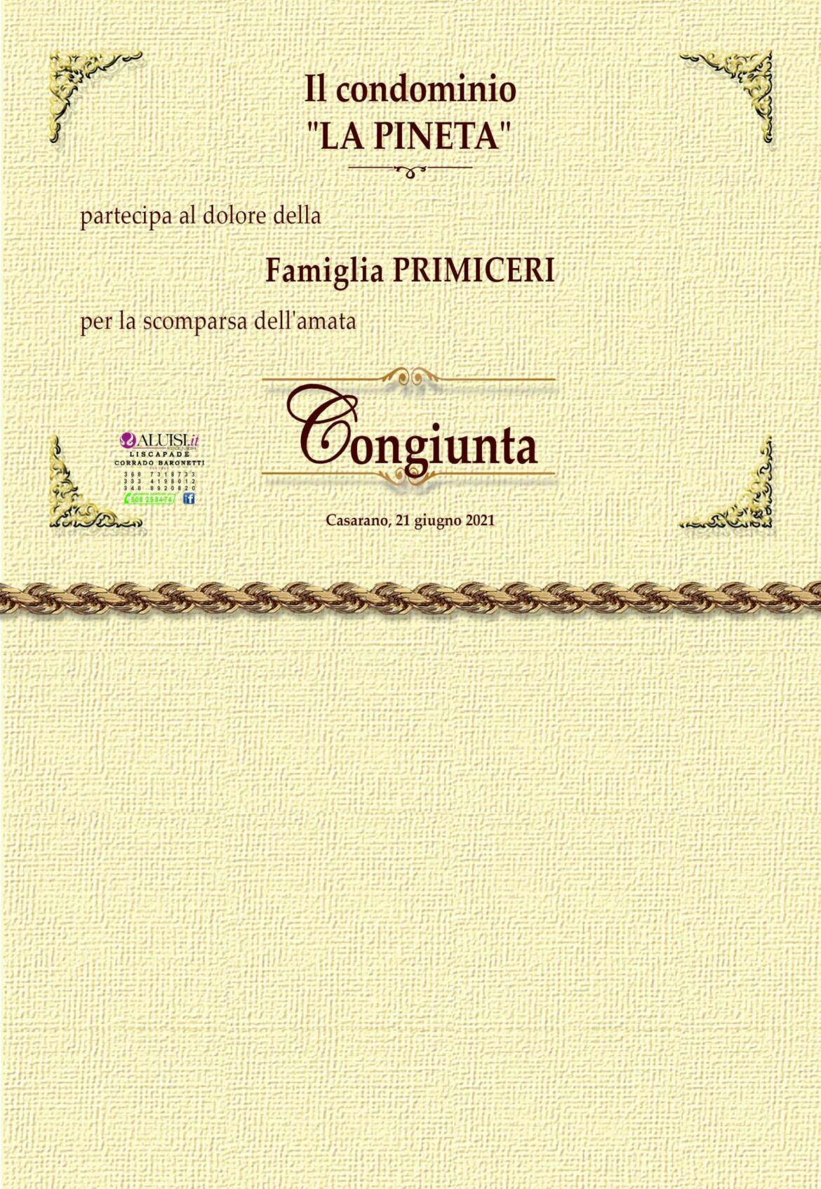 PARTECIPAZION-ANTONIA-de-luca-scaled.jpg