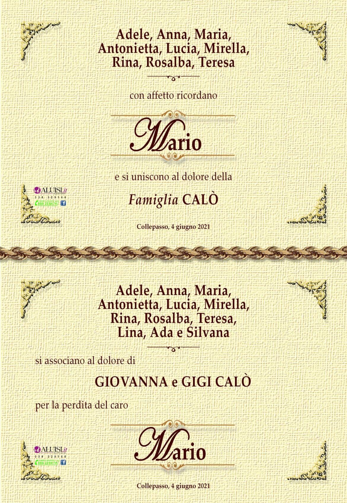 PARTECIPAZIONE-MARIO-CALo-COLLEPASSO-3-1.jpg