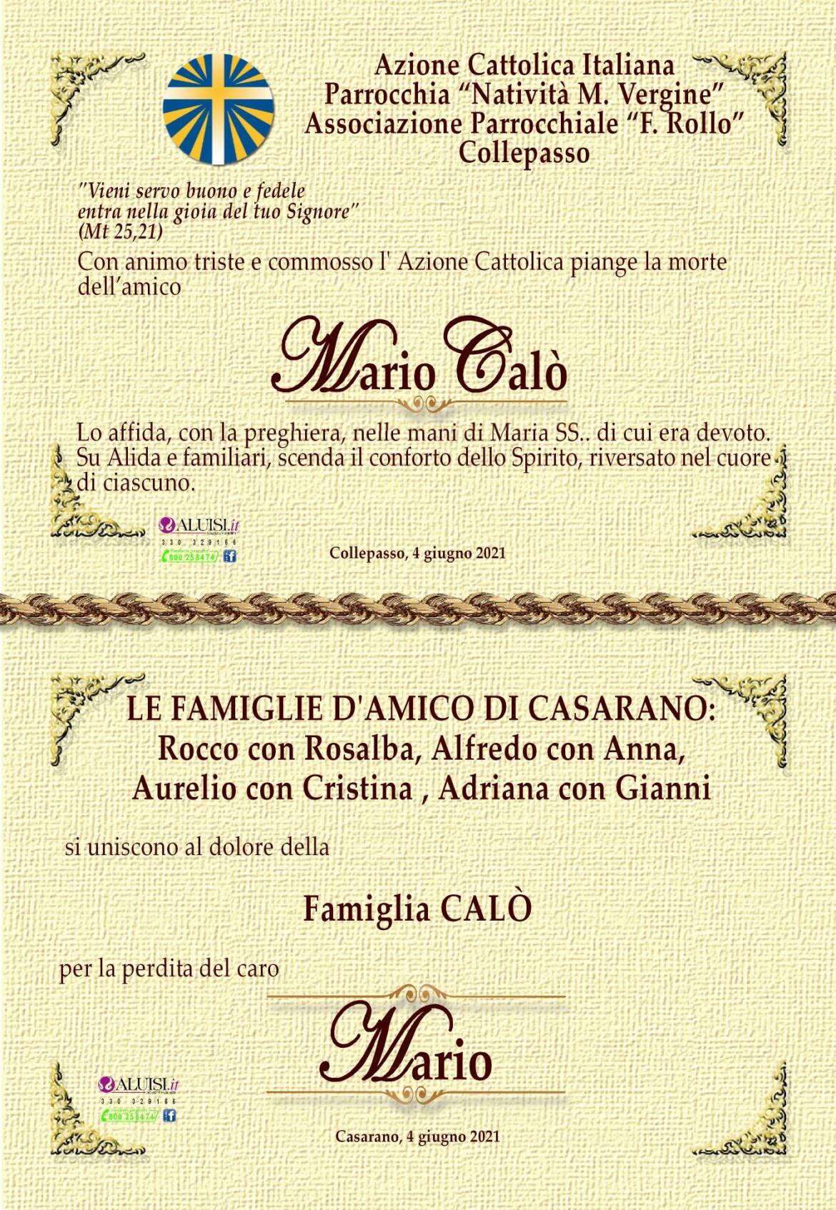 PARTECIPAZIONE-MARIO-CALo-COLLEPASSO-5-1.jpg