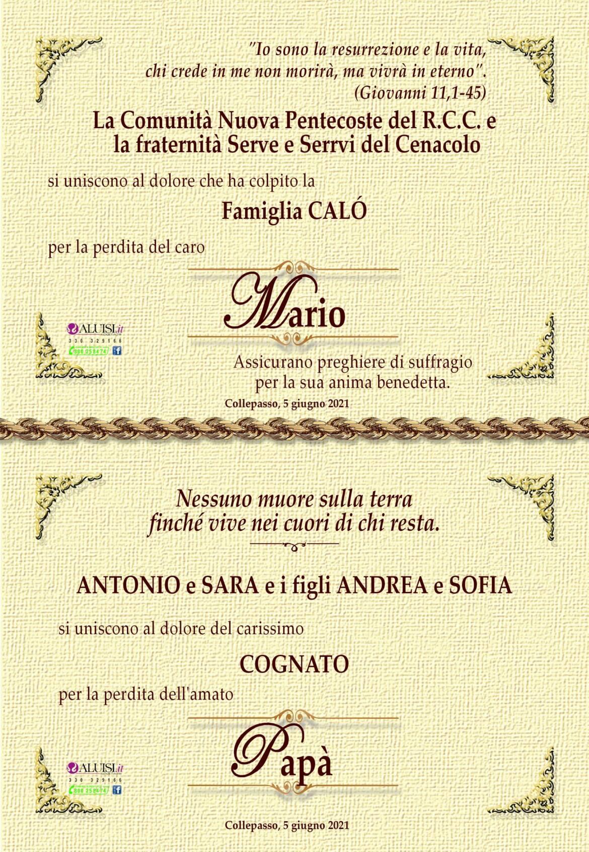 PARTECIPAZIONE-MARIO-CALo-COLLEPASSO-8-1.jpg