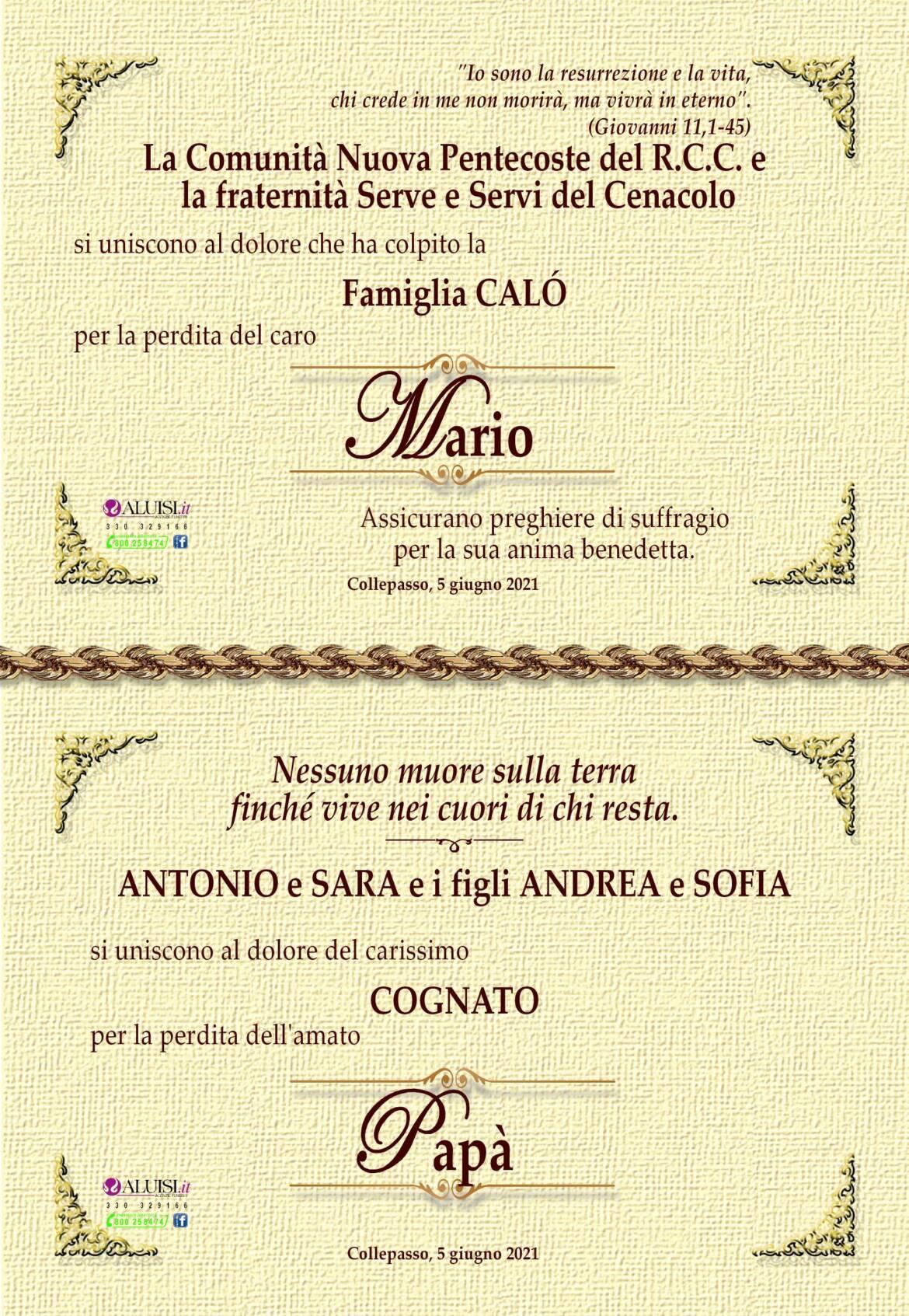 PARTECIPAZIONE-MARIO-CALo-COLLEPASSO-8-2.jpg